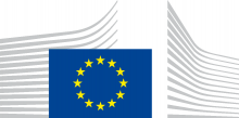 EUROPEAN COMMISSION Directorate General Internal Market, Industry, Entrepreneurship and SMEs